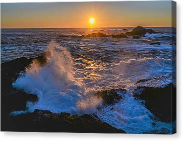 Point Lobos Sunset Canvas Print by About Light  Images