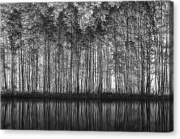 Pointillism Nature Canvas Print by Roswitha Schleicher-schwarz