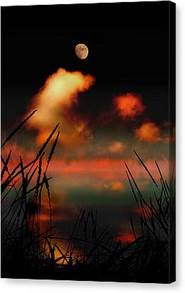 Pointing At The Moon Canvas Print by Mal Bray