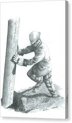 Pole Settin Canvas Print by Brad Thyne