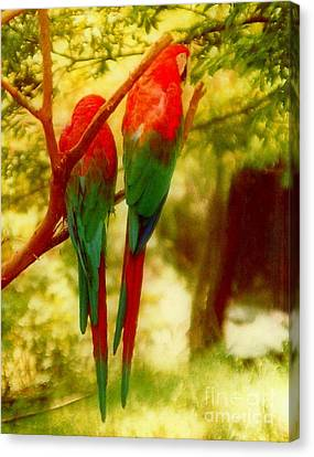 Polly Wants Two Crackers At New Orleans Louisiana Zoological Gardens  Canvas Print by Michael Hoard