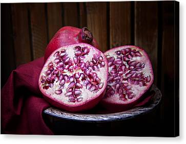 Pomegranate Still Life Canvas Print by Tom Mc Nemar