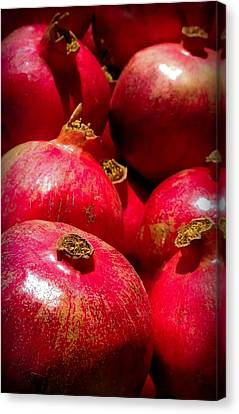 Pomegranates Canvas Print by Karen Wiles