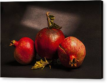 Pomegranates Canvas Print by Peter Tellone