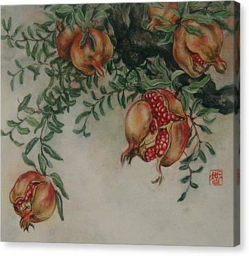 Pomegranates Canvas Print by Tomoko Koyama
