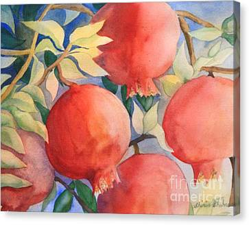 Pomogranates Canvas Print by Shirin Shahram Badie