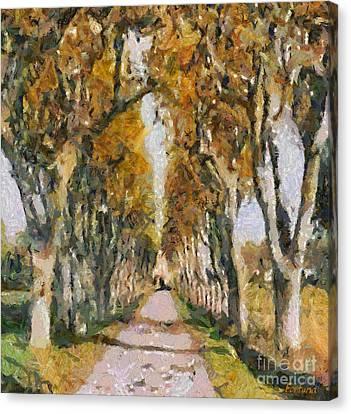 Poplar Road To Saint Remy Hospital Canvas Print by Dragica  Micki Fortuna