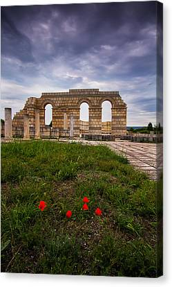 Poppies In The Ruins Canvas Print by Eti Reid