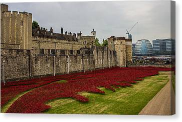 Poppies Tower Of London Canvas Print by Martin Newman