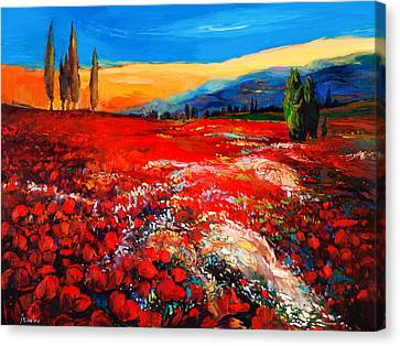 Poppies'field Canvas Print by Ivailo Nikolov