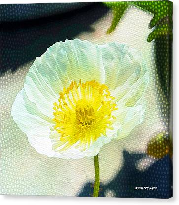Poppy Series - Beside The Sidewalk Canvas Print by Moon Stumpp