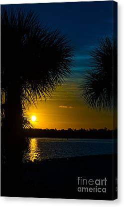 Port Charlotte Beach Sunset In January Canvas Print by Anne Kitzman
