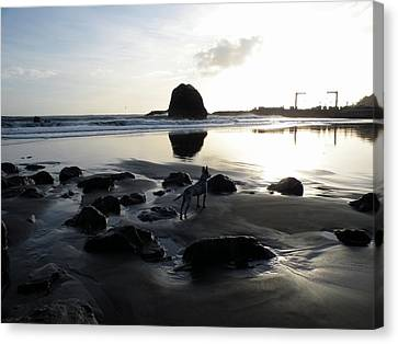 Port Orford Reflections Canvas Print by Kristal Talbot