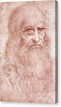 Portrait Of A Bearded Man Canvas Print by Leonardo da Vinci