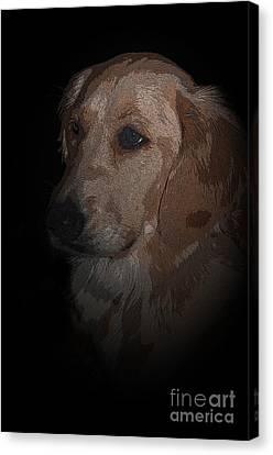 Portrait Of A Golden Canvas Print by Bianca Nadeau