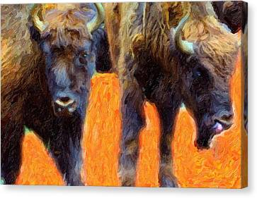 Portrait Of Bison  Canvas Print by Toppart Sweden