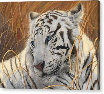 Portrait White Tiger 1 Canvas Print by Lucie Bilodeau