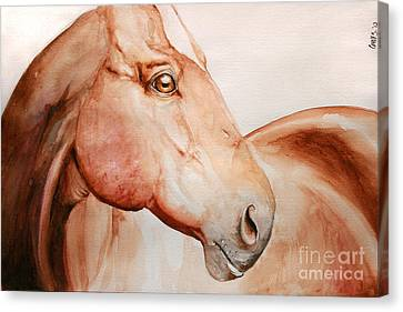 Posing Canvas Print by Tamer and Cindy Elsharouni