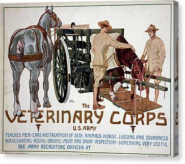 Poster Veterinary Corps Canvas Print by Granger