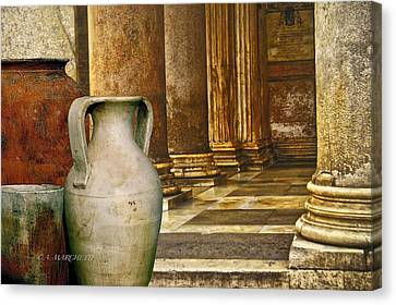 Pottery From Another Time  Canvas Print by Carolyn Marchetti