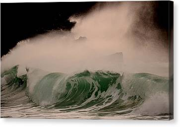 Power Wave Canvas Print by Barbara Walsh