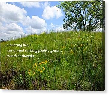 Prairie Hike Canvas Print by Scott Kingery