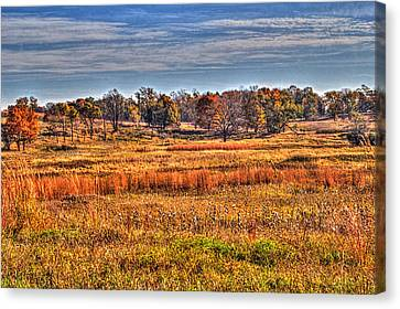 Prairie Late Fall I Canvas Print by Roger Passman