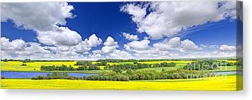 Prairie Panorama In Saskatchewan Canvas Print by Elena Elisseeva