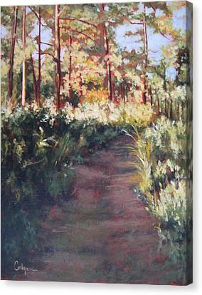 Prairie Walk Canvas Print by Carlynne Hershberger