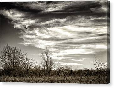 Prairie Winter Sky Canvas Print by Joan Carroll
