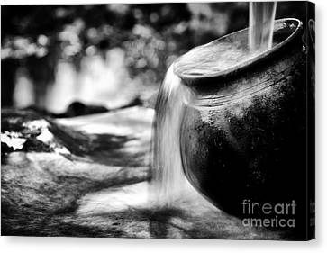 Precious Water Canvas Print by Tim Gainey