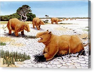 Prehistoric Giant Wombats Canvas Print by Deagostini/uig