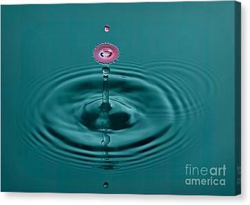 Pretty Liquid Pink Hat Canvas Print by Susan Candelario