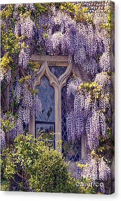 Pretty Window Canvas Print by Svetlana Sewell