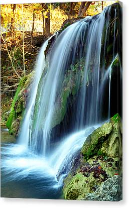 Price Falls 4 Of 5 Canvas Print by Jason Politte