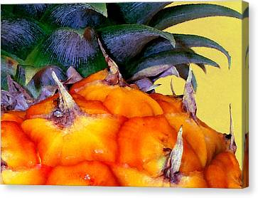 Prickly Sweet Hawaiian Pineapple Canvas Print by James Temple