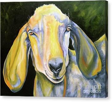 Prize Nubian Goat Canvas Print by Susan A Becker
