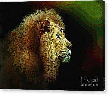 Profile Of The Lion King Canvas Print by Robert Foster