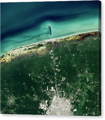 Progreso Pier Canvas Print by Nasa Earth Observatory