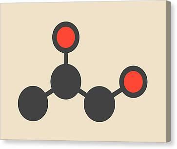 Propylene Glycol Molecule Canvas Print by Molekuul
