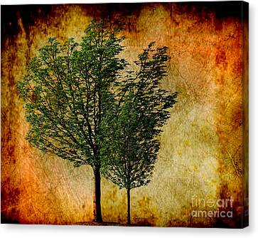 Protected Together Canvas Print by Cheryl Young