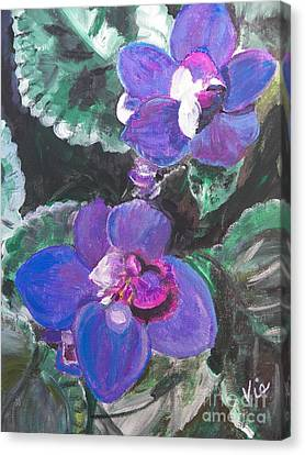 ptg   African Violets Canvas Print by Judy Via-Wolff