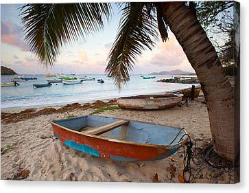Puerto Rico Morning Canvas Print by Patrick Downey