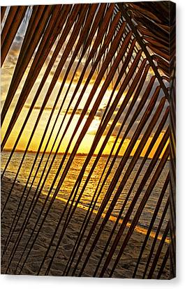 Puerto Rico Sunset 2 Canvas Print by Stephen Anderson