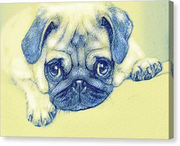 Pug Puppy Pastel Sketch Canvas Print by Jane Schnetlage