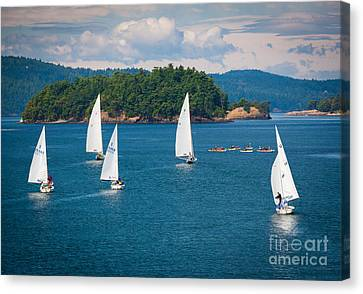 Puget Sound Sailboats Canvas Print by Inge Johnsson