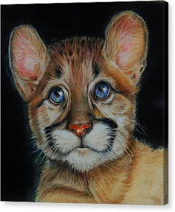 Puma Cub Canvas Print by Jean Cormier