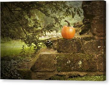 Pumpkin Canvas Print by Amanda Elwell
