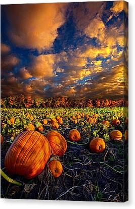 Pumpkin Crossing Canvas Print by Phil Koch