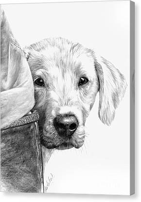 Puppies And Wellies Canvas Print by Sheona Hamilton-Grant